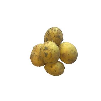 Doré aardappelen nieuwe oogst