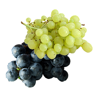 Italiaanse druiven topkwaliteit