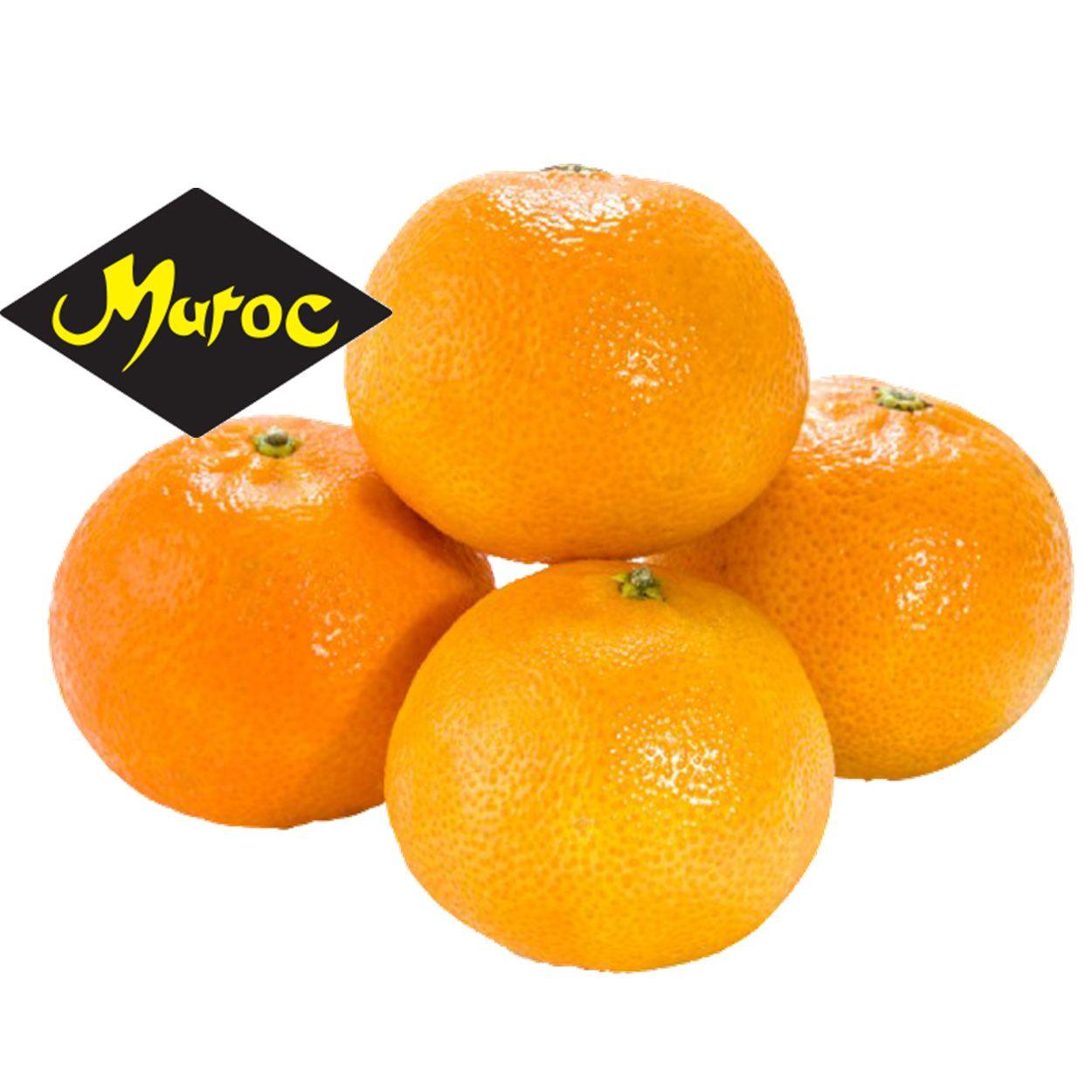 Maroc Clementines per kilo
